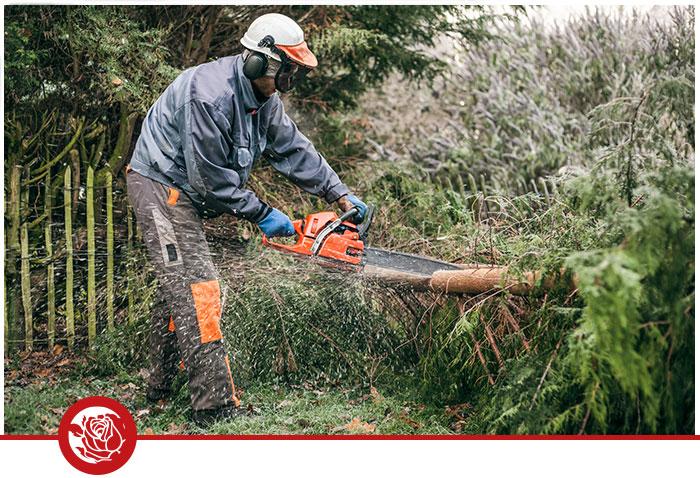Gartenpflege Baumrückschnittarbeiten Duisburg